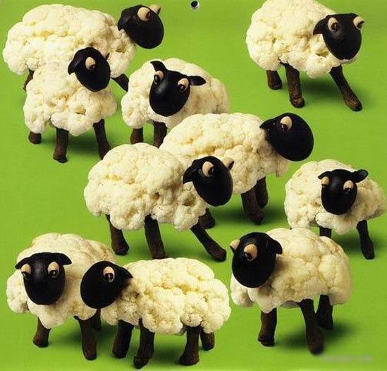 Đàn cừu dễ thương với thân làm từ súp lơ trắng như bông.