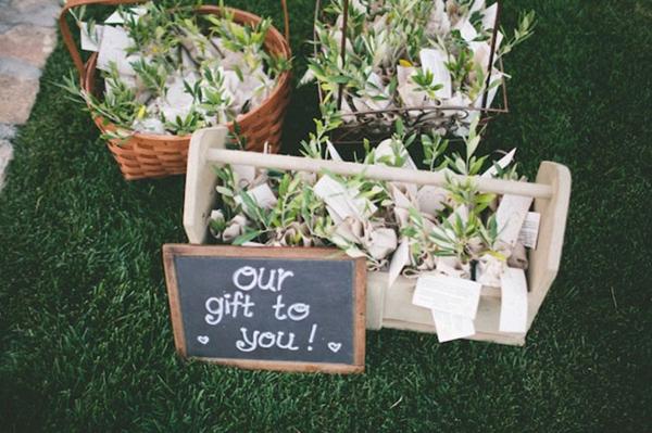 Đặc biệt, trong đám cưới mùa hè, cô dâu chú rể có thể tặng khách những chậu cây nhỏ nhắn.
