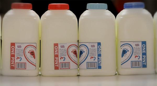 Tình yêu vĩnh hằng của hai hộp sữa