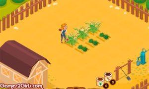 Trang trại lúa mạch