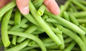 Cách nhận biết rau tươi phun hóa chất