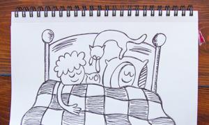 Bộ ảnh hài hước 'Nhật ký ngủ trên giường của mèo'