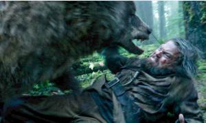 Leo DiCaprio ẵm 20 triệu USD sau cảnh đánh nhau với gấu