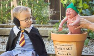 Bố mẹ chụp ảnh con trai theo phong cách Harry Potter ở nghĩa địa