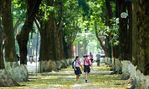 Những khoảnh khắc đẹp của Hà Nội vào mùa hè