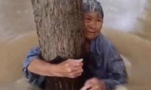 Cụ ông buộc vợ vào thân cây, để mình bị nước lũ cuốn trôi