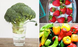 17 độc chiêu tích trữ rau củ quả luôn tơi rói