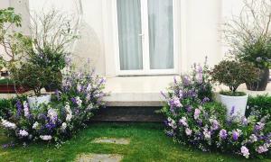 Nữ chủ nhân làm đẹp biệt thự trắng bằng hàng ngàn cành violet