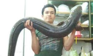 Người dân Nghệ An bắt được cá lệch 15kg