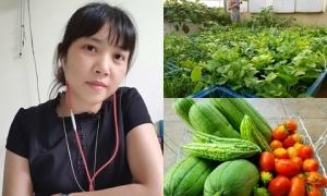Bà mẹ hai con ở Hưng Yên thu hàng tạ nông phẩm từ vườn rau sân thượng 40 m2