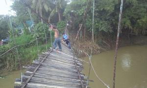 20 khách dự đám cưới ngã nhào xuống sông vì cầu treo bị lật