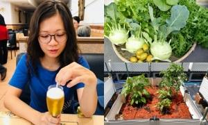 Nàng dâu Việt tại Đài Loan trồng đủ loại rau trên mảnh vườn nhiều sỏi, đá