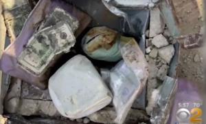 Phát hiện 'kho báu' chứa tiền, vàng, kim cương khi trồng cây sau vườn