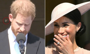 Meghan bật cười khi Harry bị ong làm phiền lúc đang phát biểu