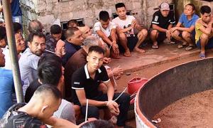 Hơn 90 người bị bắt tại sới gà