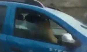 Bị tù treo vì sex khi lái xe