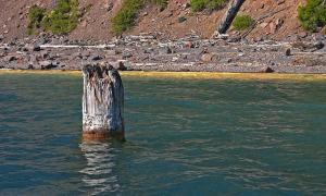 Khúc gỗ dựng trên mặt hồ suốt 120 năm