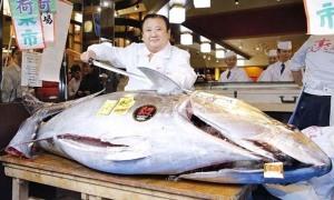 Chi 1,8 triệu USD mua cá ngừ