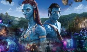 Phim 'Avatar 2' hoãn quay ở New Zealand