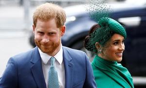 Harry - Meghan cảm ơn fan trước khi rời hoàng gia