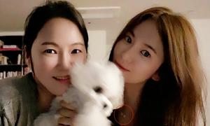 Song Hye Kyo bị đồn quay lại với Hyun Bin