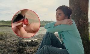 Mai Thanh Hà đổ máu ở phim trường