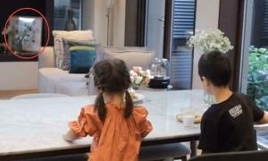 Vợ chủ tịch Taobao trưng ảnh gia đình