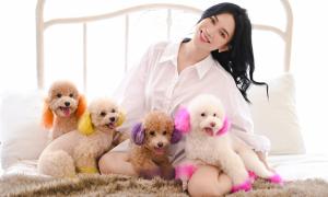 Đàn cún cưng giá trăm triệu của Sĩ Thanh