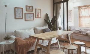 Quản lý Đồng Ánh Quỳnh tự cải tạo căn hộ với 50 triệu đồng