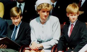Diana từng đau đớn vì William được thiên vị hơn Harry