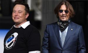 Elon Musk thách đấu Johnny Depp sau khi bị dọa cắt của quý