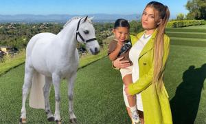 Kylie Jenner tặng con gái ngựa trắng 200.000 USD