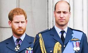 William và Harry 'đang cố hàn gắn rạn nứt'