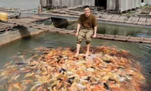 Quang Vinh chơi với cá ở Cần Thơ