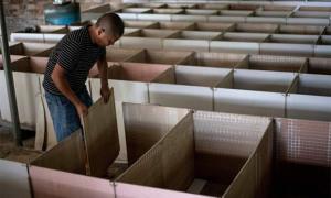 Người nuôi động vật hoang dã ở Trung Quốc chìm trong nợ nần