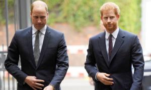William từng nhờ cậu ngăn Harry cưới Meghan