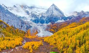 Bức tranh mùa thu lộng lẫy ở Trung Quốc