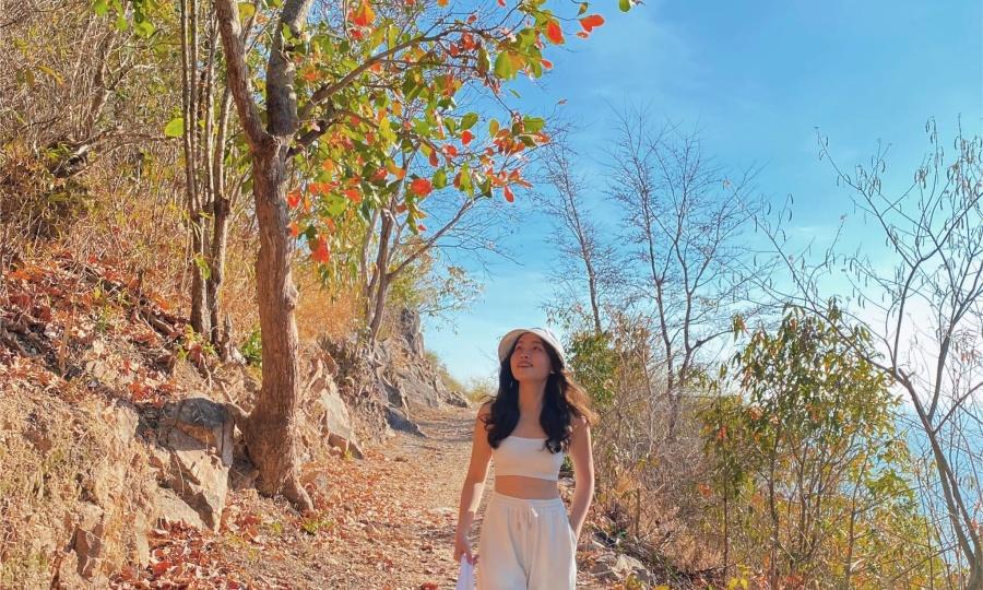 Vũng Tàu mùa lá khô như thu Hàn Quốc