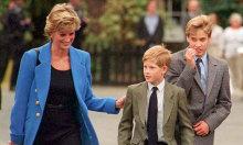 Diana tin Harry sẵn sàng làm vua hơn William