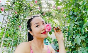 Khu vườn ngập hoa trái của Ốc Thanh Vân