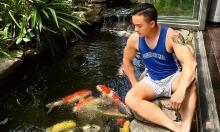 Sao Việt nuôi cá Koi